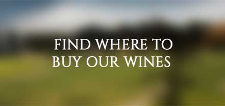Where to Buy Our Wines